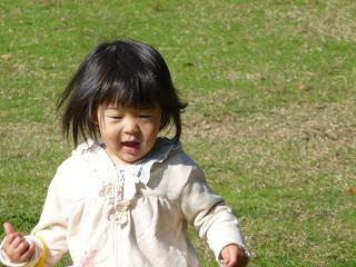 2010 11 21 大泉緑地 tibi04