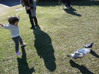 2010 11 27 植物園6 tibi01
