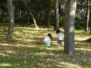 2010 11 27 長居公園植物園8 tibi02