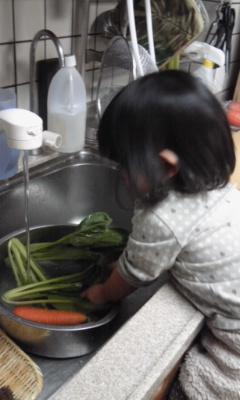 110125_1703~01 野菜洗い