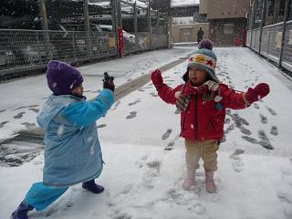 2011 02 11 20100210雪遊び tibi01