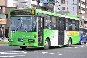DSC_0554-1.jpg