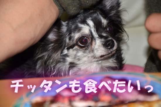 6_20120308012638.jpg
