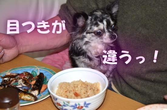 8_20120308012744.jpg