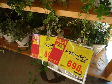698円也