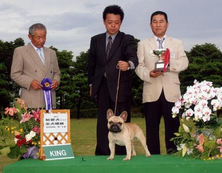 dog-show2_20111119185211.jpg