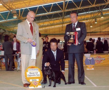 dog-show3_20111102210229.jpg