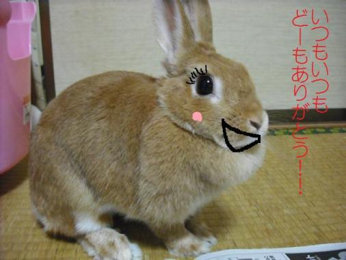 002_20110920075658.jpg