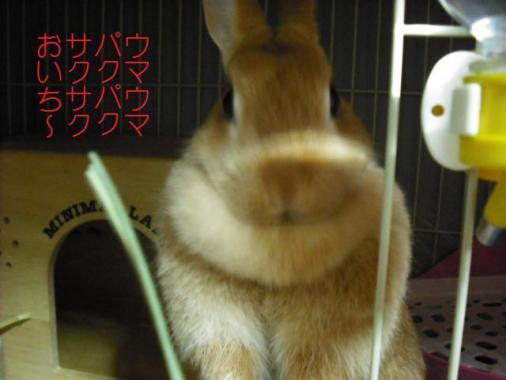 003_20110912094432.jpg