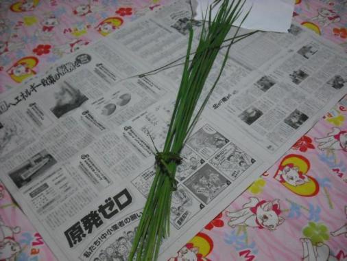 010_convert_20110811210203_20110811212552.jpg