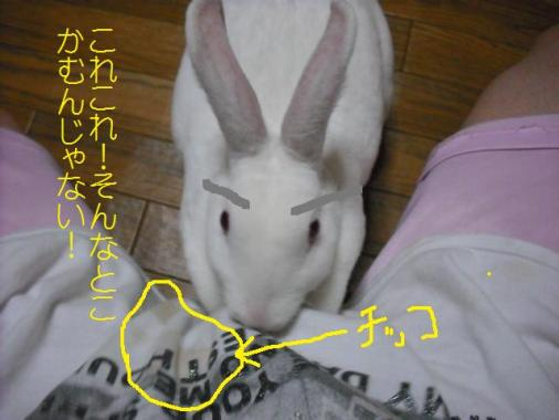 024_20110920080150.jpg