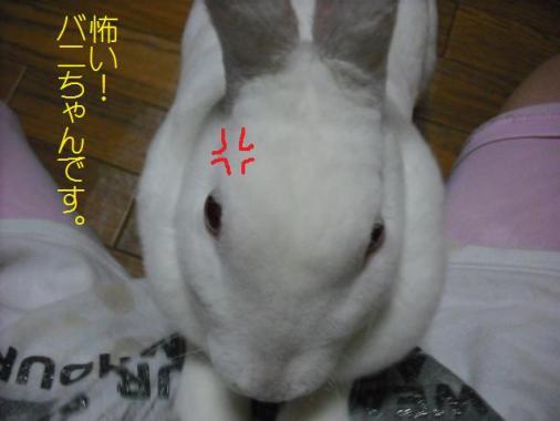 025_20110920080150.jpg
