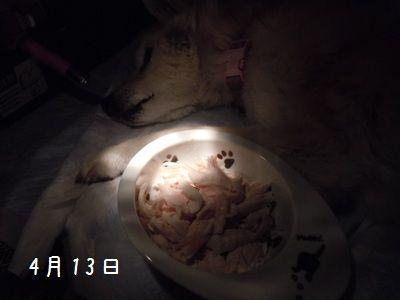 ササミ食べる?