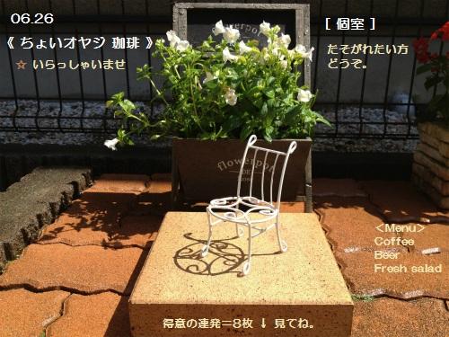 9 ワIMG_3501-