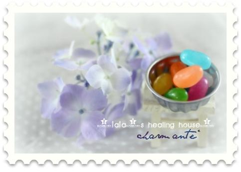 紫陽花&ゼリービーンズ★
