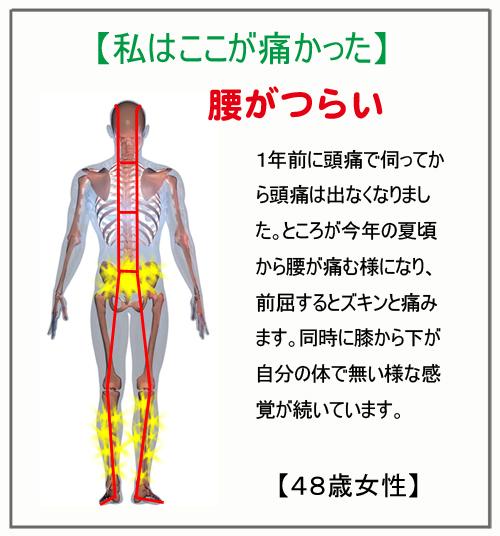 20121002184644385.jpg