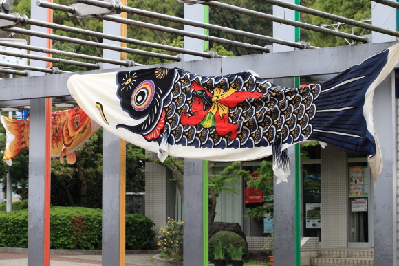 とべ動物園に大きな鯉のぼり