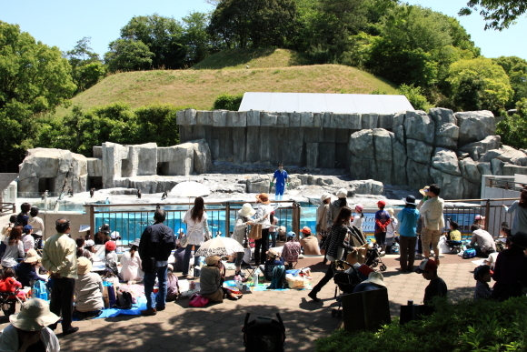 第25回とべ動物園写生大会の様子です。