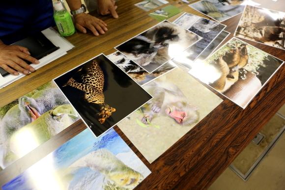 とべ動物園写真クラブ