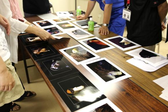 とべ動物園を応援する写真クラブのブログ-とべ動物園会議室にて写真クラブの1月例会の予定