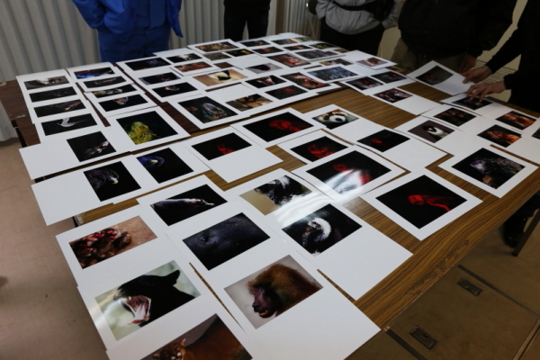 とべ動物園を応援する写真クラブのブログ-動物園写真クラブ愛媛の例会の様子