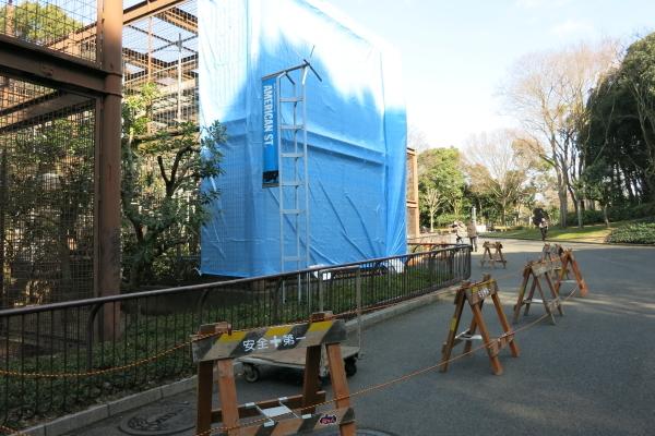 とべ動物園を応援する写真クラブのブログ-ピューマの運動場のメンテナンス工事中