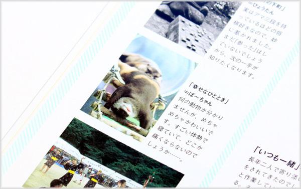 とべ動物園を応援する写真クラブのブログ-「モーメンツ」2013年2月号で気になる賞を受賞