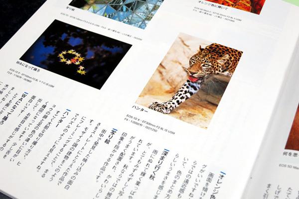 とべ動物園を応援する写真クラブのブログ-「モーメンツ」2013年3月号ブロンズ賞を受賞