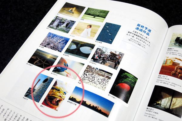 とべ動物園を応援する写真クラブのブログ-「モーメンツ」2013年4月号で最終予選通過