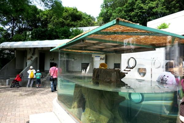 とべ動物園を応援する写真クラブのブログ-カワウソ舎