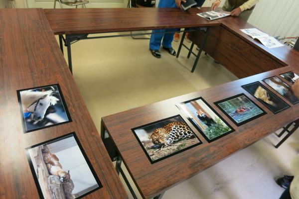とべ動物園を応援する写真クラブのブログ-動物園写真クラブ愛媛の例会
