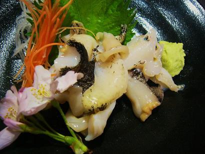 つぶ貝刺身2 (1)