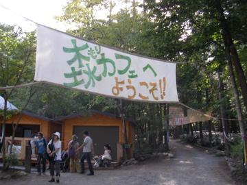 森カフェ1