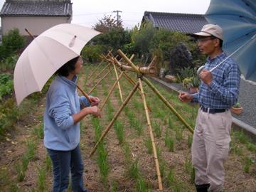 自然農ツア-1