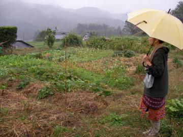 自然農ツア-3