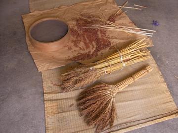 タカキビ脱穀2