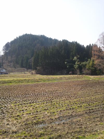 INAKA720120409.jpg