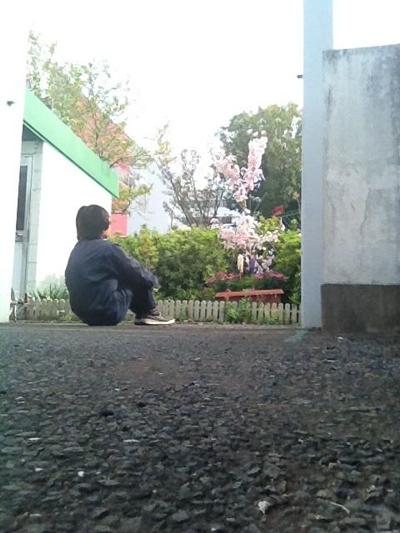 SAKURA20120419.jpg
