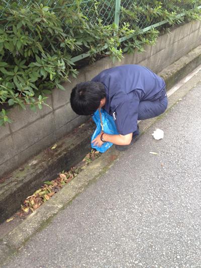 SEISO-20120730.jpg