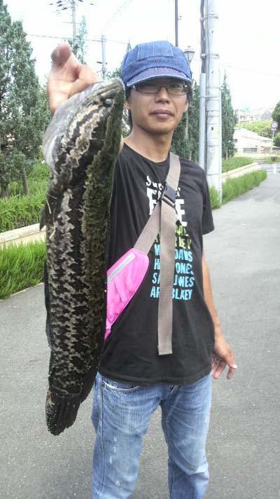 raigyo20110718.jpg