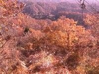 登山路最後の紅葉