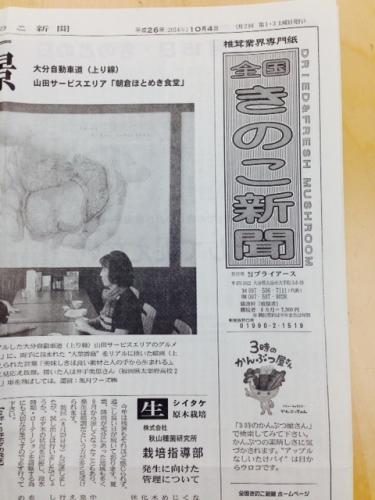 きのこ新聞