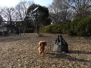嵐丸 2011.2.21-9