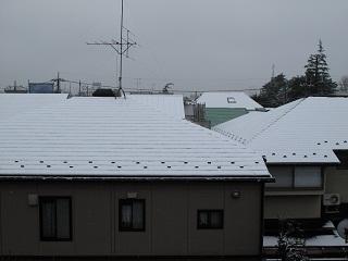 嵐丸 2011.3.7-1
