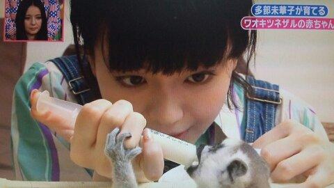 志村動物園第3回 ミルクをあげる