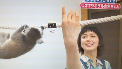 志村動物園第4回ナイスヘルプ