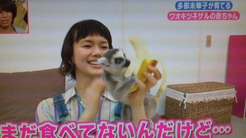 志村動物園第4回バナナの取り合い