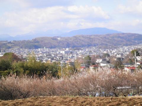 秦野市街を望む148