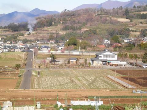 春の田原盆地133