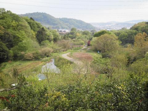 弘法山方面31
